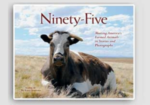 Book cover: Ninety-Five
