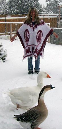 Marilyn Miller, Fuzzy-Bird, Affie-Goose